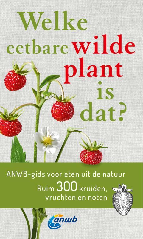 Welke eetbare wilde plant is dat?