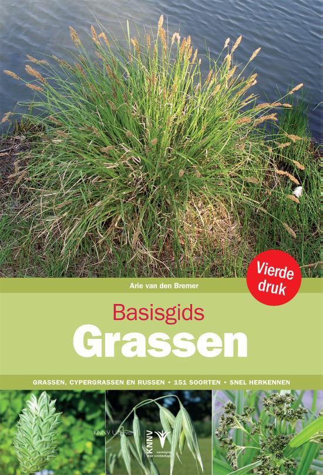 Basisgids Grassen - natuurgids, plantengids