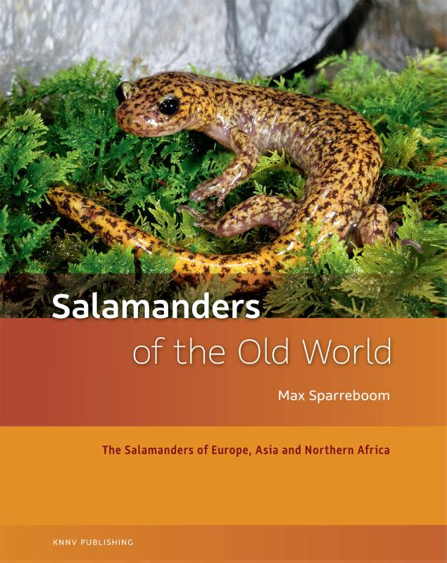 Salamanders of the Old World - amfibieen