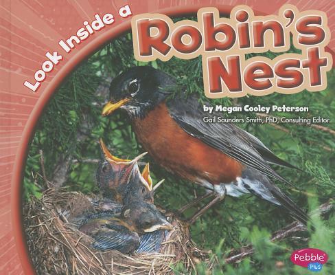 Look Inside a Robin's Nest