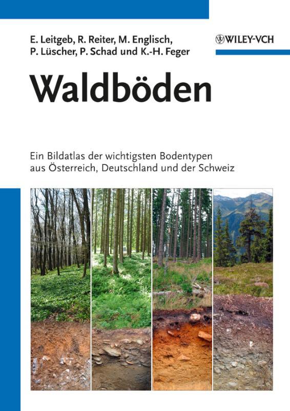 Waldböden