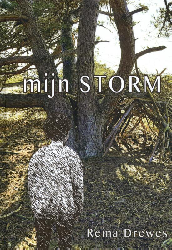 Mijn Storm