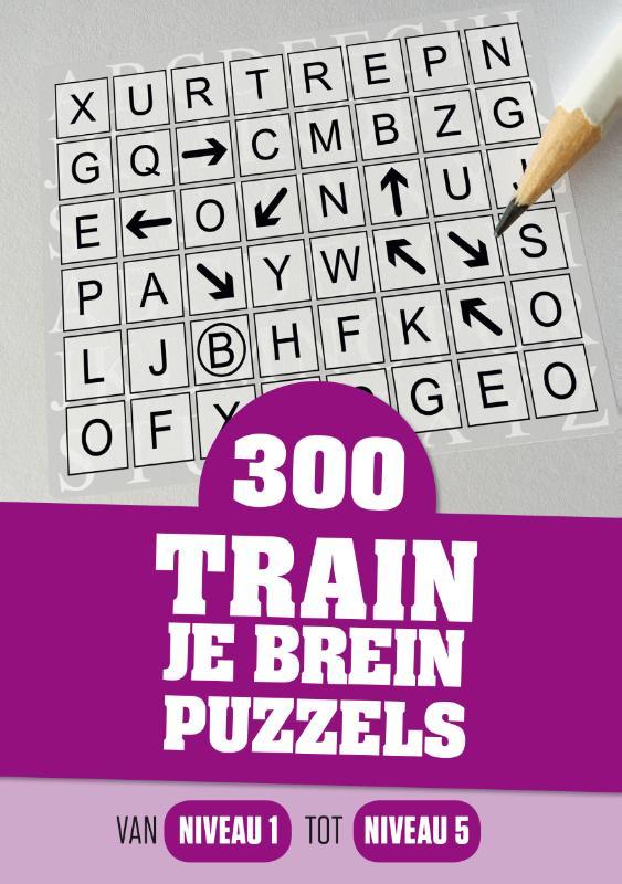 300 train je brein puzzels