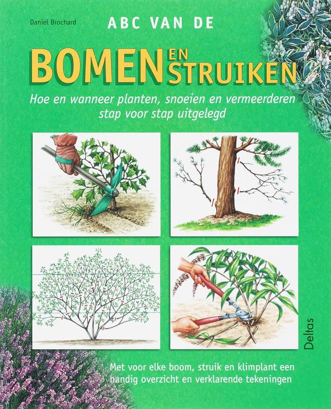 ABC van de bomen en struiken