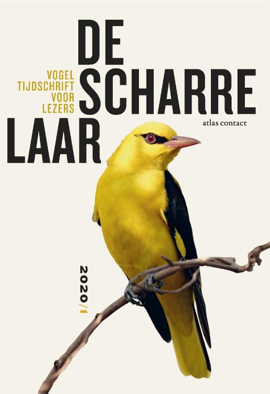 De Scharrelaar 3 - Vogeltijdschrift voor lezers