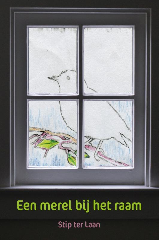 Een merel bij het raam